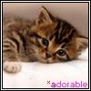 Аватар для Аллочка Т