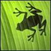 Аватар для ПочемучМэн